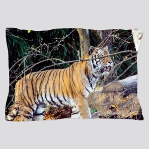 Tiger in the woods Pillow Case