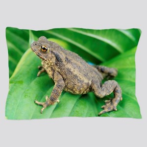 Common toad Pillow Case
