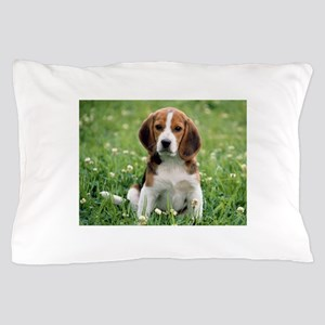 Beagle Pillow Case