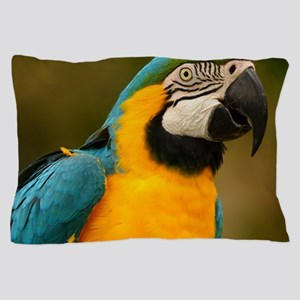 blue and gold macaw Pillow Case