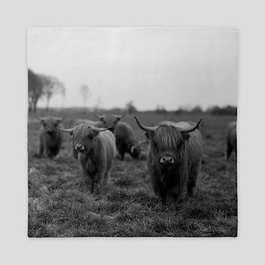 Scottish highland cattle on field, Nor Queen Duvet