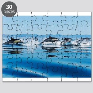 Leaping Dolphin Pod Puzzle