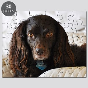 Halle in Bed Puzzle