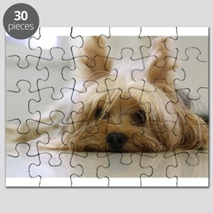 Yorkshire Terrier laying flat Puzzle