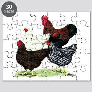 Plymouth Rock Chickens Puzzle