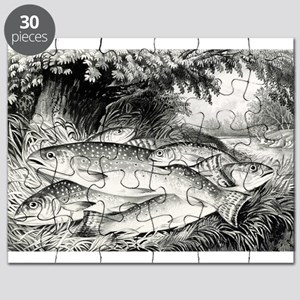 American brook trout - 1872 Puzzle