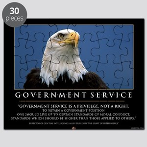 Government Service 16x20 Poster