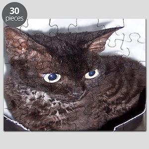 Cat-Sack-1 Puzzle