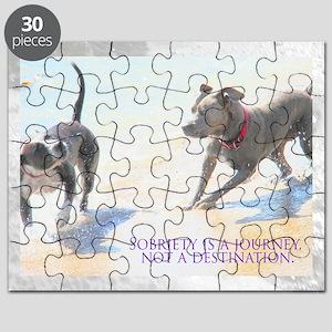 PSTR-journey2 Puzzle