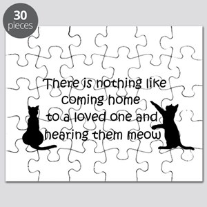 Coming Home to aCat Puzzle