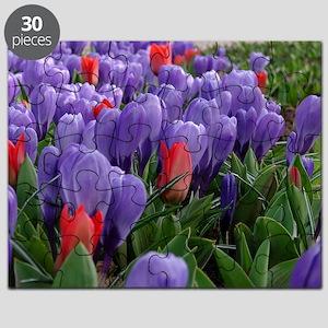 Purple  Red Tulips at Keukenhof Gardens Puzzle