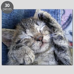 Sleeping Kitten Puzzle