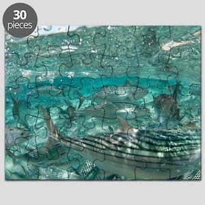 Atlantic bonito in a fishing net Puzzle