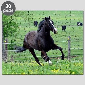 spring_walker_mini Puzzle
