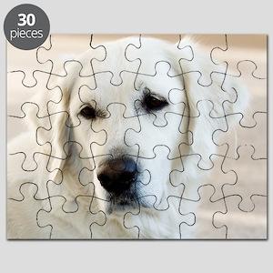 dreamstimefree_2397201 Puzzle
