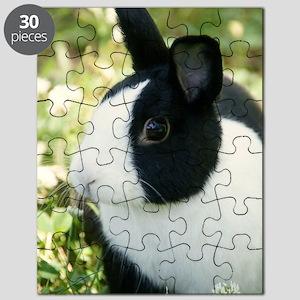Simon Puzzle