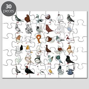 36 Pigeon Breeds Puzzle