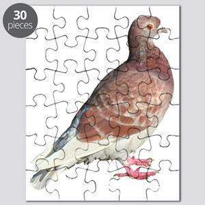 Red Pigeon (Isolated) Puzzle