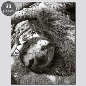 Hanging Sloth Puzzle