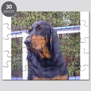 black and tan coonhound Puzzle