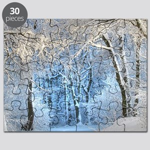 Another Winter Wonderland Puzzle