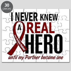 Multiple Myeloma Real Hero 2 Puzzle