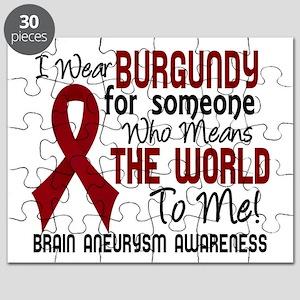 Brain Aneurysm MeansWorldToMe2 Puzzle