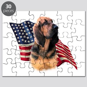 BloodhoundFlag Puzzle