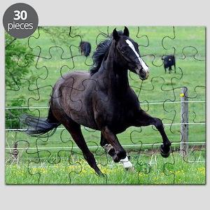 spring_walker_rnd Puzzle