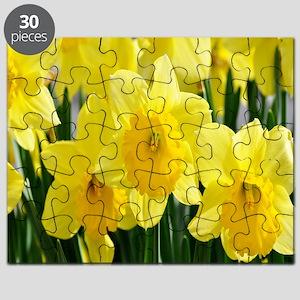 alaska 3 083 - Copy - Copy (3) copy1 Puzzle