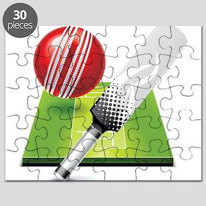 Cricket pitch bat ball Puzzle