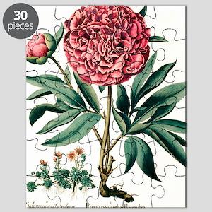 Peony flowers Puzzle