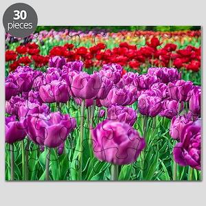 Tulip Field Puzzle