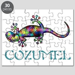 Gecko Puzzle