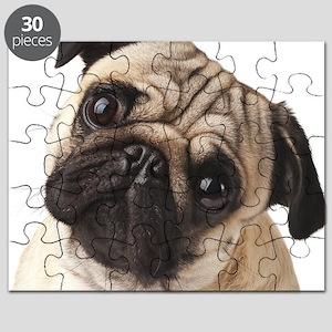 Curious Pug Puzzle