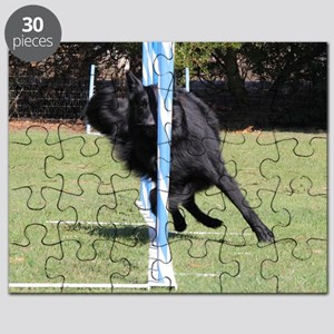 RigelWeaving322 Puzzle