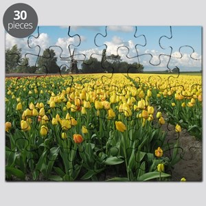 Dutch Windmill and Yellow Tulips Field in Holland