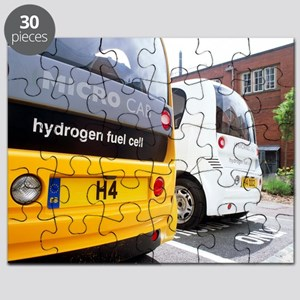 Hydrogen fuel cell cars - Puzzle