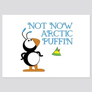 Not Now Arctic Puffin 5x7 Flat Cards