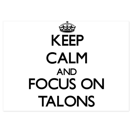 Keep Calm and focus on Talons