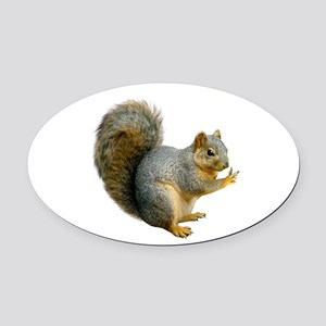 Peace Squirrel Oval Car Magnet
