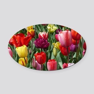 Tulip_2015_0207 Oval Car Magnet