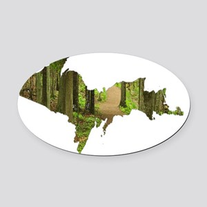 Forest_Path_Sugar_Loaf_001 Oval Car Magnet