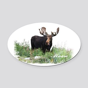 Maine Moose Oval Car Magnet