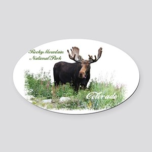 Rocky Mnt Natl Park Colo Moose Oval Car Magnet