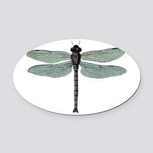 Dragonfly Oval Car Magnet