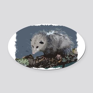Opossum on a Gnarley Branch Oval Car Magnet