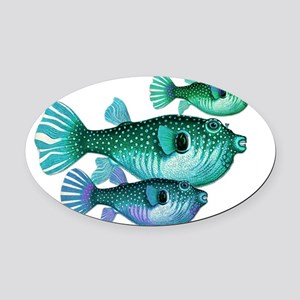 Trio of Blue Green Puffer Fish Oval Car Magnet