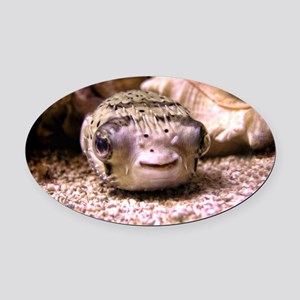 Blowfish Oval Car Magnet