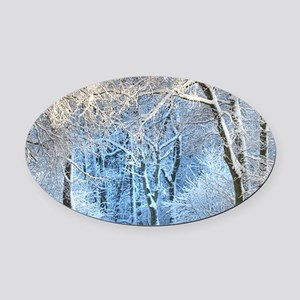Another Winter Wonderland Oval Car Magnet